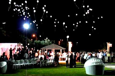 אטרקציות לחתונה הפרחת בלונים בחופה